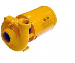 Bomba Centrífuga Jacuzzi 2DM1-M 2CV Monofásica 110/220V