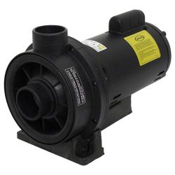 Bomba para Hidromassagem Jacuzzi 3TQ-M 3,0 CV Monofásica 110/220V